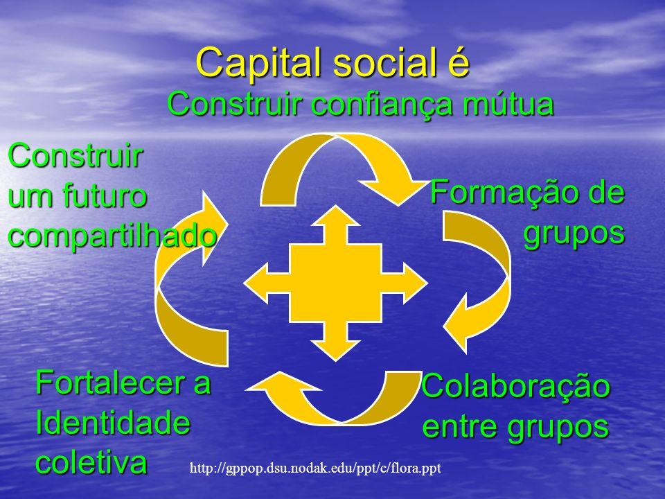 Construir confiança mútua Formação de grupos grupos Colaboração entre grupos Fortalecer a Identidadecoletiva Construir um futuro compartilhado Capital social é http://gppop.dsu.nodak.edu/ppt/c/flora.ppt