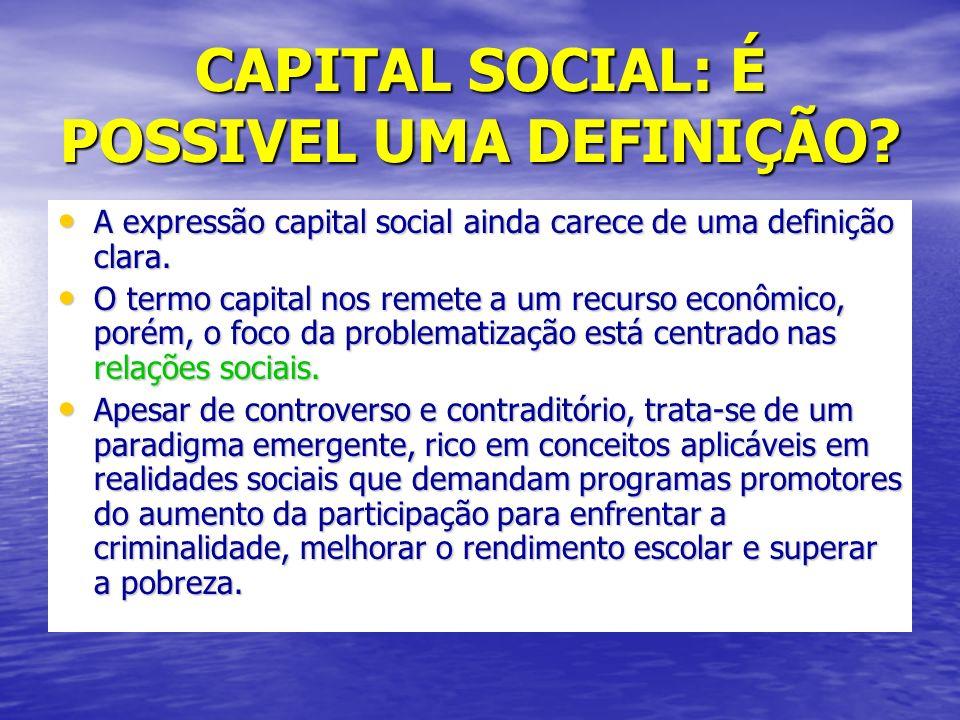 CAPITAL SOCIAL: É POSSIVEL UMA DEFINIÇÃO.