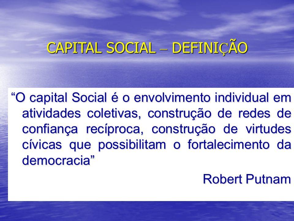 ANÁLISE DA VARIAÇÃO DO CAPITAL SOCIAL DE IJUÍ 19682005 Sim91,832,8 Não6,365,8 NS/NR1,91,5 Diminuiu a participação na resolução dos problemas locais Fonte: Trindade (1968) e dados elaborados pelo autor a partir da Pesquisa: Desenvolvimento Sustentável e Capital Social - NIEM/ NUPESAL/ UNIJUÍ - 2005