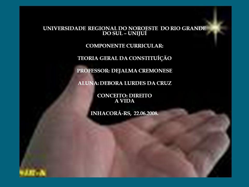 UNIVERSIDADE REGIONAL DO NOROESTE DO RIO GRANDE DO SUL – UNIJUÍ COMPONENTE CURRICULAR: TEORIA GERAL DA CONSTITUÍÇÃO PROFESSOR: DEJALMA CREMONESE ALUNA