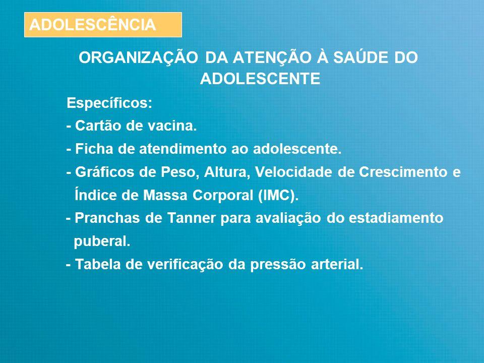 ORGANIZAÇÃO DA ATENÇÃO À SAÚDE DO ADOLESCENTE Gerais: - Prontuário Familiar / Cartão SUS.
