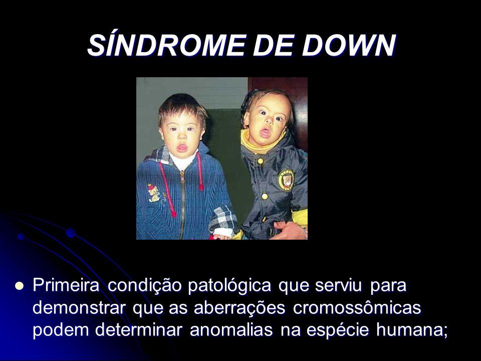 Cocaína: Retardo do crescimento intra-uterino; Retardo do crescimento intra-uterino; Microcefalia; Microcefalia; Infarto cerebral; Infarto cerebral; Anomalias urogenitais; Anomalias urogenitais; Distúrbios neurocomportamentais Distúrbios neurocomportamentais