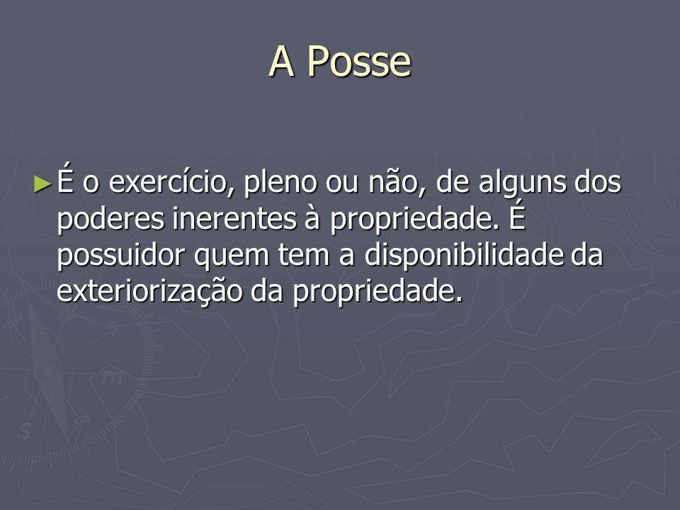 A Posse É o exercício, pleno ou não, de alguns dos poderes inerentes à propriedade. É possuidor quem tem a disponibilidade da exteriorização da propri
