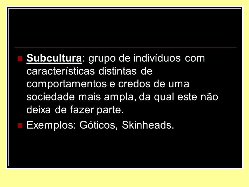 Subcultura: grupo de indivíduos com características distintas de comportamentos e credos de uma sociedade mais ampla, da qual este não deixa de fazer