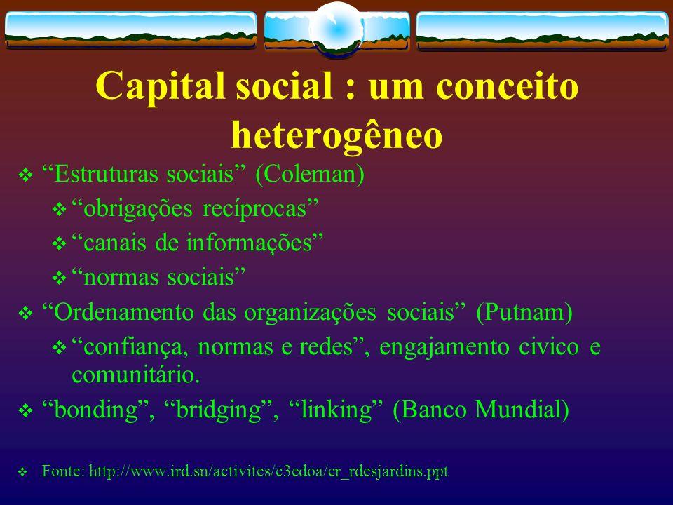 Em busca de uma definição A expressão capital social ainda carece de uma definição clara.