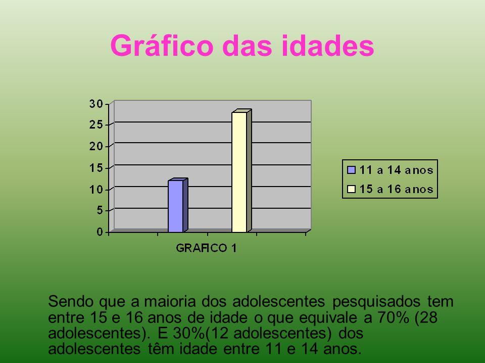 Gráfico das idades Sendo que a maioria dos adolescentes pesquisados tem entre 15 e 16 anos de idade o que equivale a 70% (28 adolescentes). E 30%(12 a