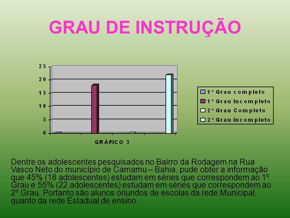 GRAU DE INSTRUÇÃO Dentre os adolescentes pesquisados no Bairro da Rodagem na Rua Vasco Neto do município de Camamu – Bahia, pude obter a informação qu