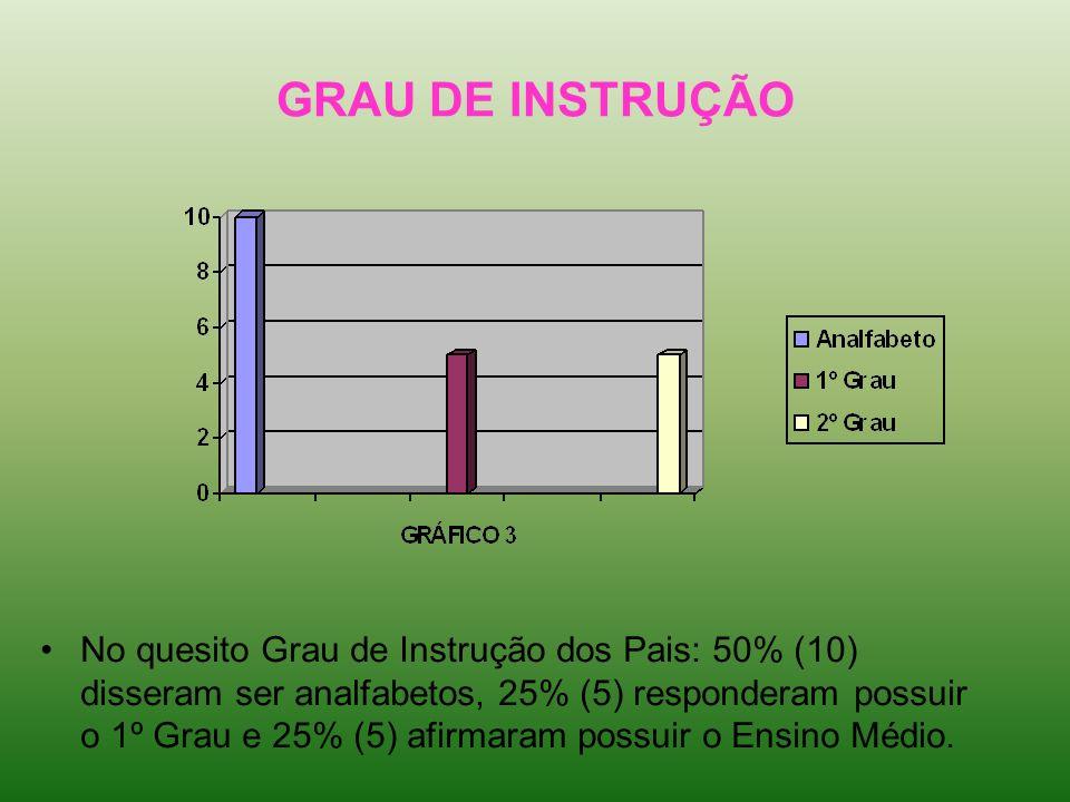 GRAU DE INSTRUÇÃO No quesito Grau de Instrução dos Pais: 50% (10) disseram ser analfabetos, 25% (5) responderam possuir o 1º Grau e 25% (5) afirmaram
