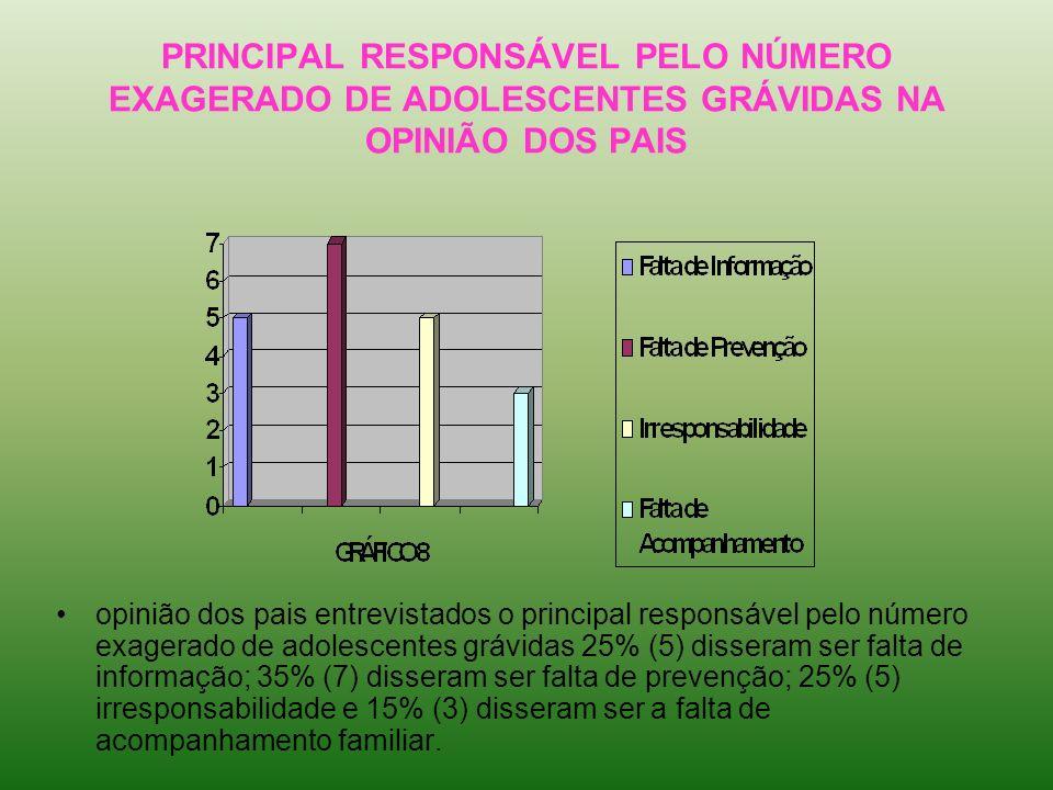 PRINCIPAL RESPONSÁVEL PELO NÚMERO EXAGERADO DE ADOLESCENTES GRÁVIDAS NA OPINIÃO DOS PAIS opinião dos pais entrevistados o principal responsável pelo n
