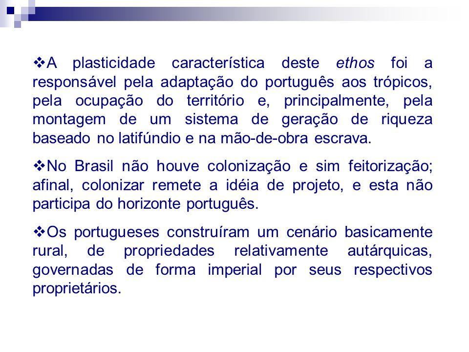 A plasticidade característica deste ethos foi a responsável pela adaptação do português aos trópicos, pela ocupação do território e, principalmente, p