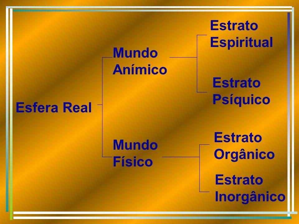 Esfera Real Mundo Anímico Mundo Físico Estrato Espiritual Estrato Psíquico Estrato Orgânico Estrato Inorgânico