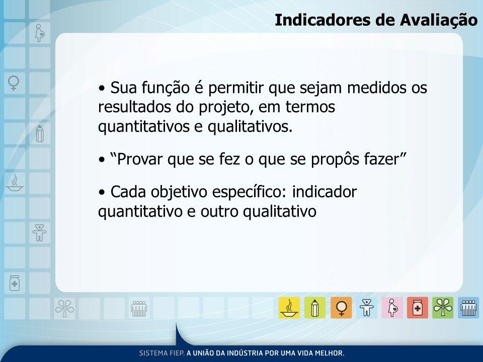 Indicadores de Avaliação Sua função é permitir que sejam medidos os resultados do projeto, em termos quantitativos e qualitativos. Provar que se fez o