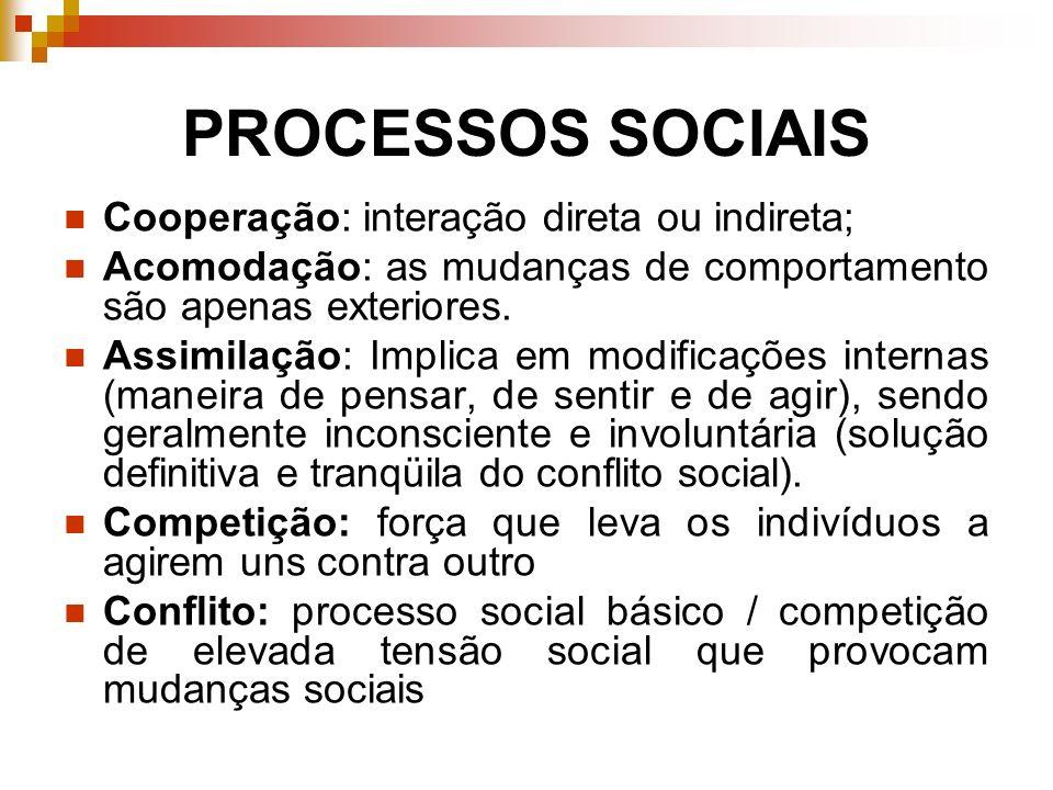 PROCESSOS SOCIAIS Cooperação: interação direta ou indireta; Acomodação: as mudanças de comportamento são apenas exteriores. Assimilação: Implica em mo