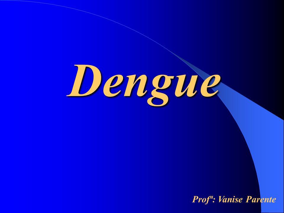 Dengue Características Gerais Estrutura Antigênica Patogenia Manifestações Clínicas Diagnóstico Epidemiologia, Prevenção e Controle