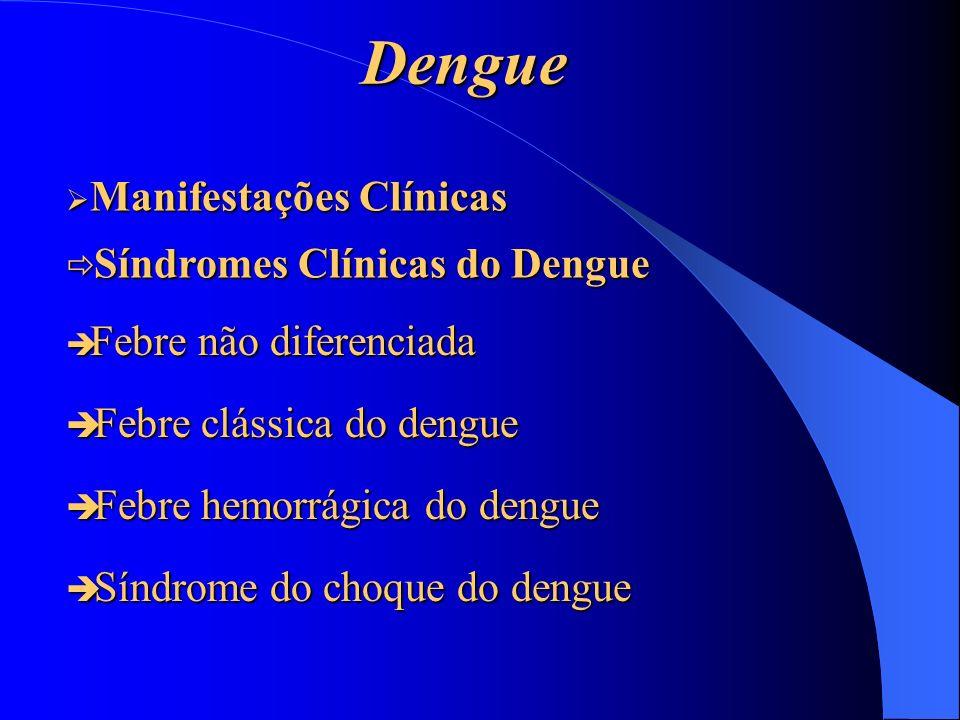 Dengue Febre não diferenciada Febre não diferenciada Febre clássica do dengue Febre clássica do dengue Febre hemorrágica do dengue Febre hemorrágica d