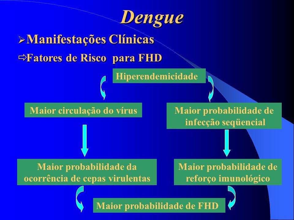 Dengue Hiperendemicidade Maior circulação do vírus Maior probabilidade da ocorrência de cepas virulentas Maior probabilidade de infecção seqüencial Ma