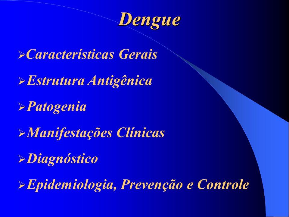 Dengue Características Gerais Características Gerais É um arbovírus.