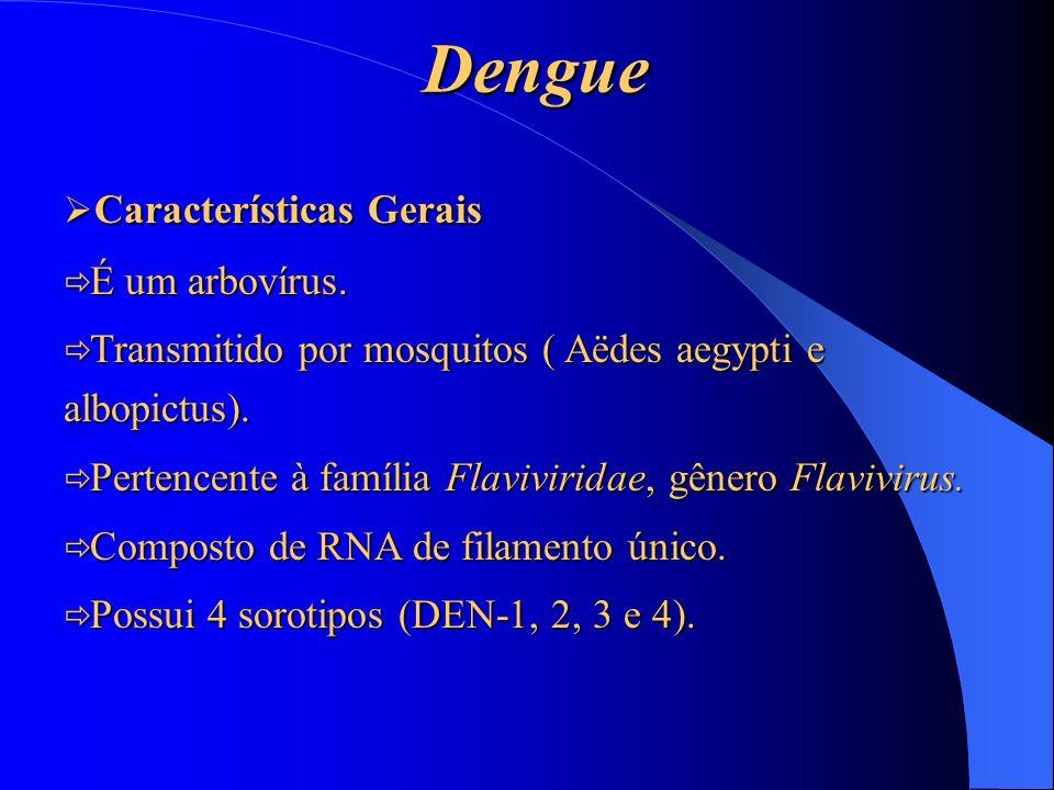 Dengue Características Gerais Características Gerais É um arbovírus. É um arbovírus. Transmitido por mosquitos ( Aëdes aegypti e albopictus). Transmit