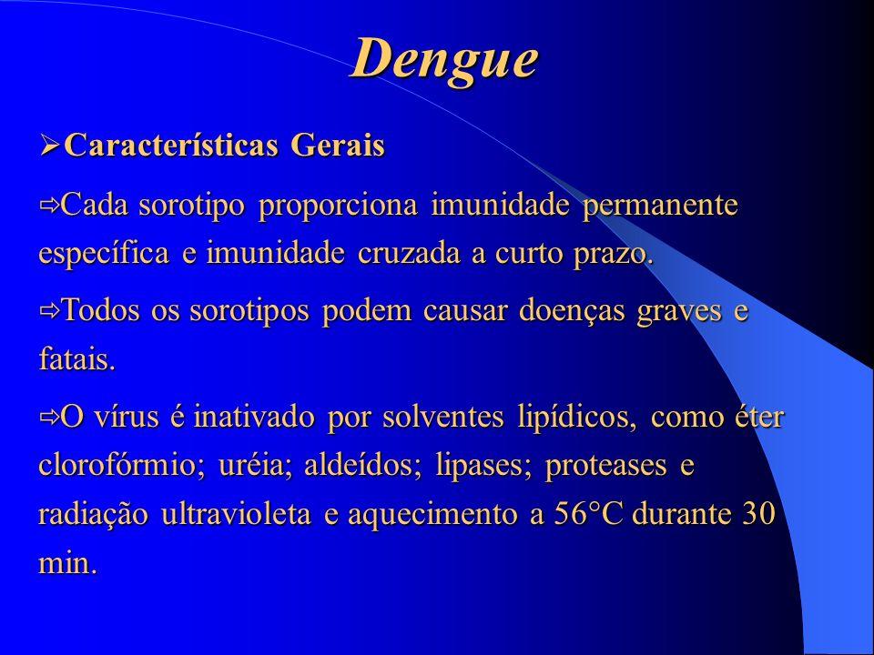 Dengue Características Gerais Características Gerais Cada sorotipo proporciona imunidade permanente específica e imunidade cruzada a curto prazo. Cada