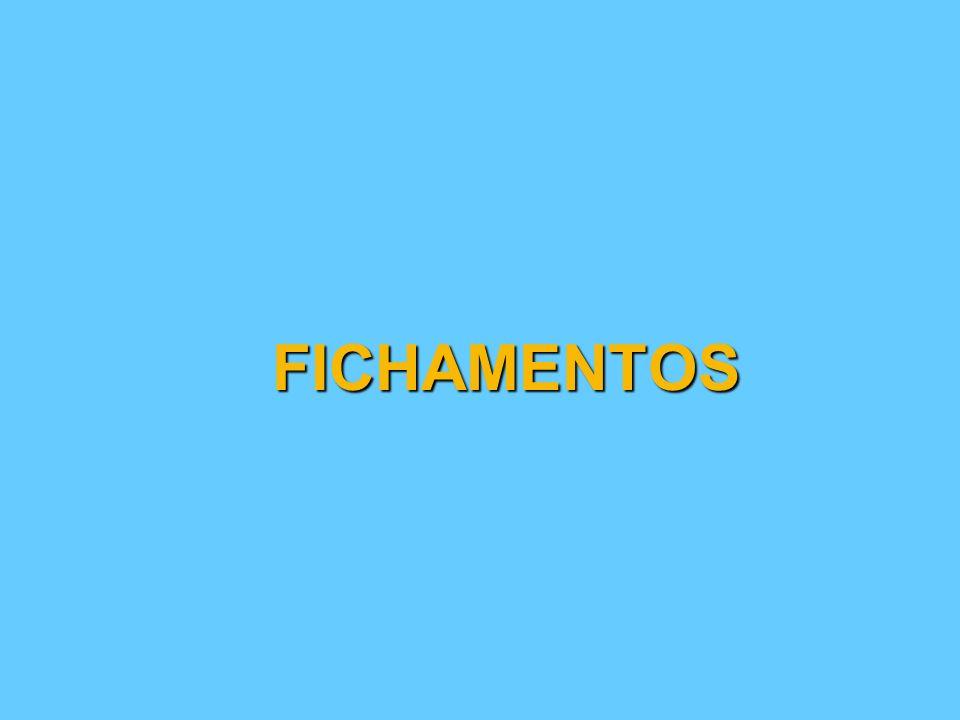FICHAMENTOS