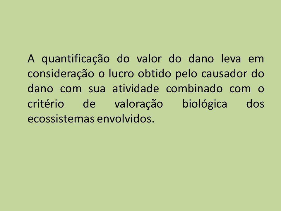 A quantificação do valor do dano leva em consideração o lucro obtido pelo causador do dano com sua atividade combinado com o critério de valoração biológica dos ecossistemas envolvidos.