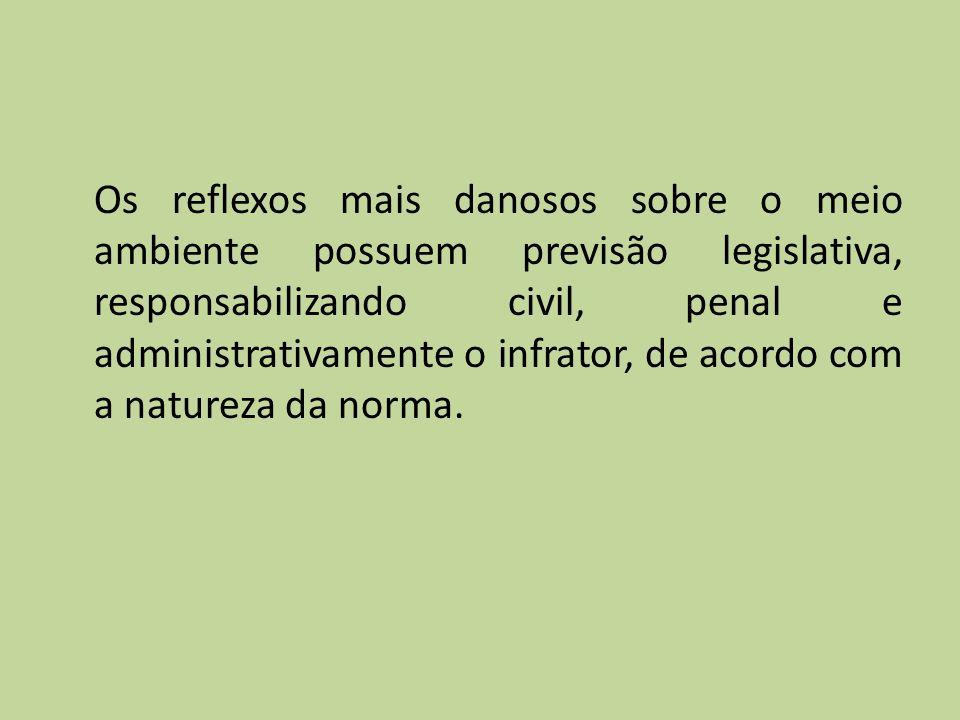 Os reflexos mais danosos sobre o meio ambiente possuem previsão legislativa, responsabilizando civil, penal e administrativamente o infrator, de acordo com a natureza da norma.
