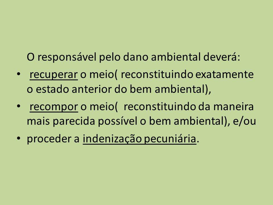 O responsável pelo dano ambiental deverá: recuperar o meio( reconstituindo exatamente o estado anterior do bem ambiental), recompor o meio( reconstituindo da maneira mais parecida possível o bem ambiental), e/ou proceder a indenização pecuniária.