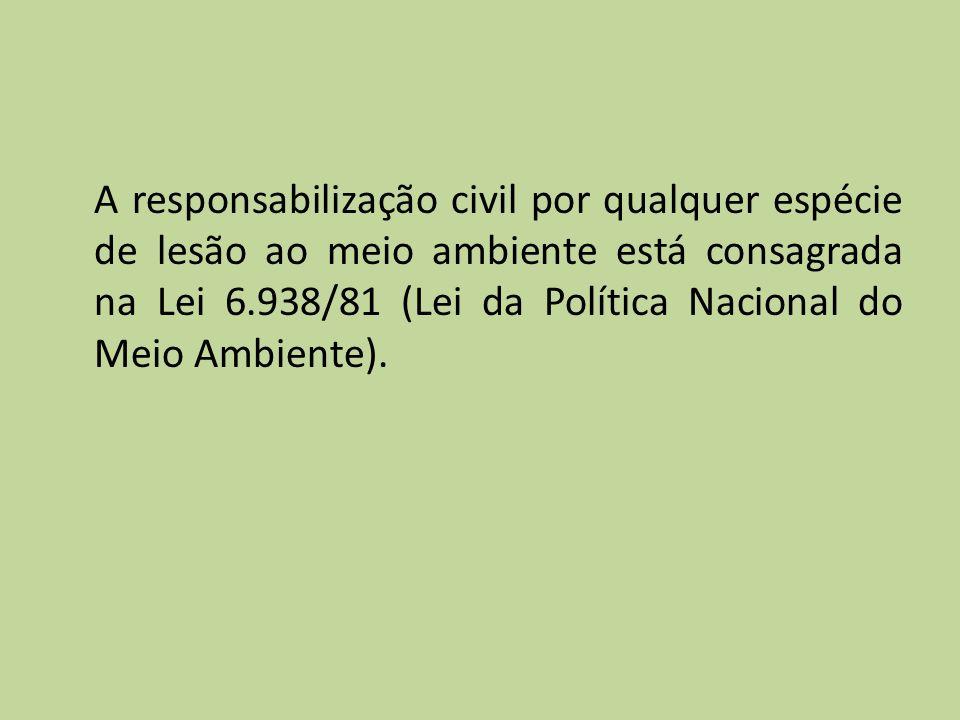 A responsabilização civil por qualquer espécie de lesão ao meio ambiente está consagrada na Lei 6.938/81 (Lei da Política Nacional do Meio Ambiente).