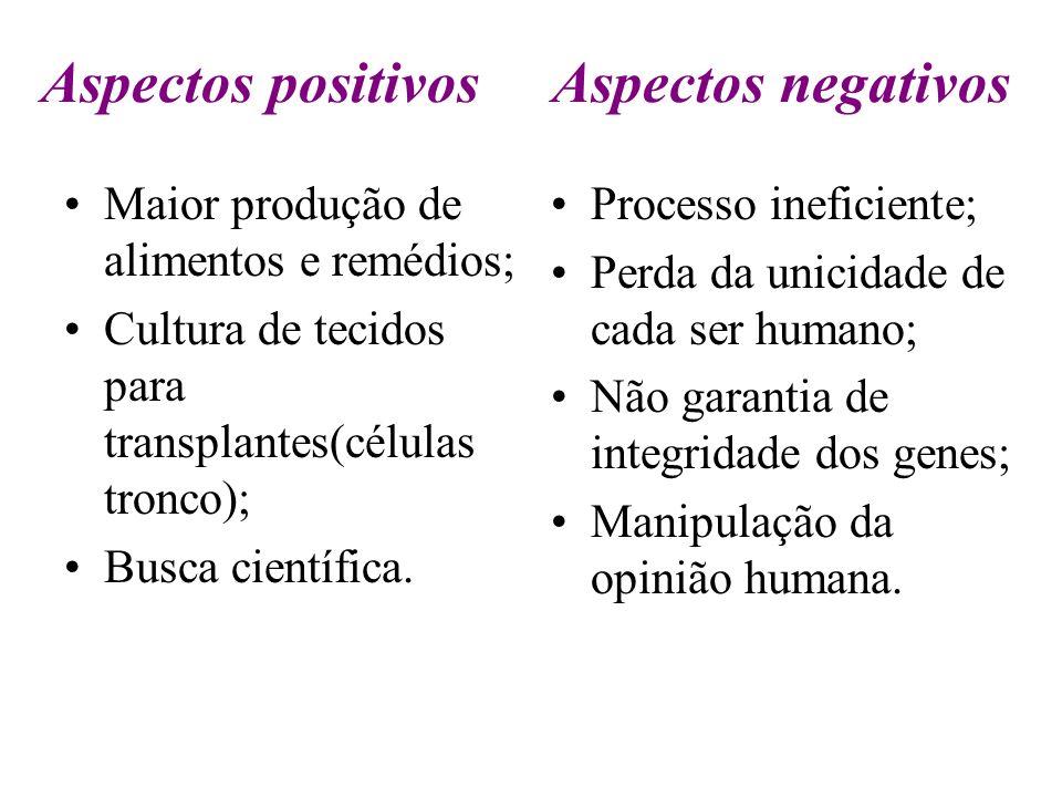 Aspectos positivos Aspectos negativos Maior produção de alimentos e remédios; Cultura de tecidos para transplantes(células tronco); Busca científica.