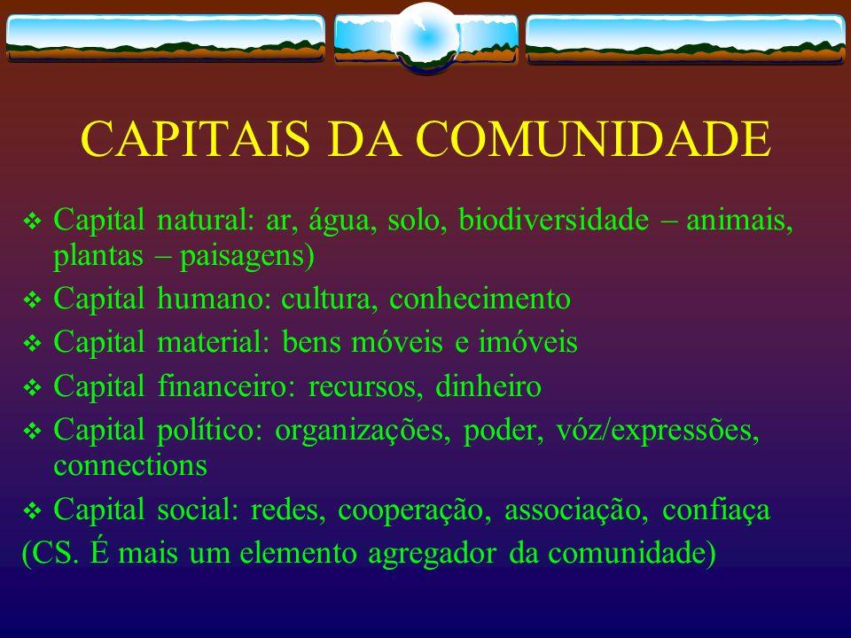 CAPITAIS DA COMUNIDADE Capital natural: ar, água, solo, biodiversidade – animais, plantas – paisagens) Capital humano: cultura, conhecimento Capital m