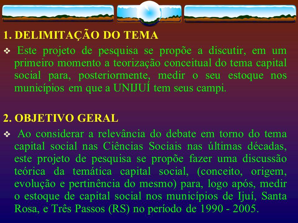 CAPITAL SOCIAL Espírito comunitário Voluntarismo Ajuda mútua e governança Participação em assuntos locais Organização civica Envolvimento na comunidade e atividades sociais Ajudando os vizinhos e as pessoas que estão com necessidades