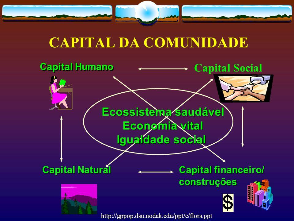 CAPITAL DA COMUNIDADE Capital Social Capital financeiro/ construções Capital Humano Capital Natural Ecossistema saudável Economia vital Igualdade soci