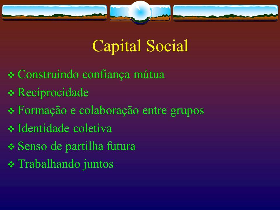 Capital Social Construindo confiança mútua Reciprocidade Formação e colaboração entre grupos Identidade coletiva Senso de partilha futura Trabalhando