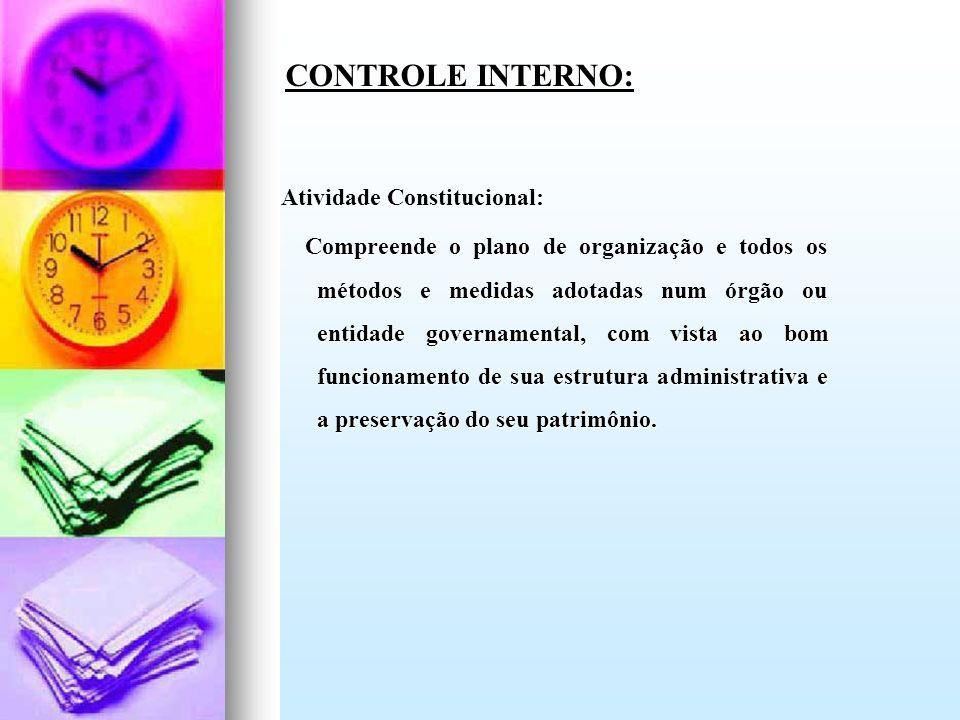 Atividade Constitucional: Compreende o plano de organização e todos os métodos e medidas adotadas num órgão ou entidade governamental, com vista ao bo