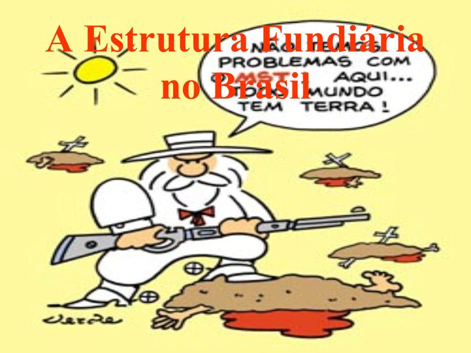 A Estrutura Fundiária no Brasil