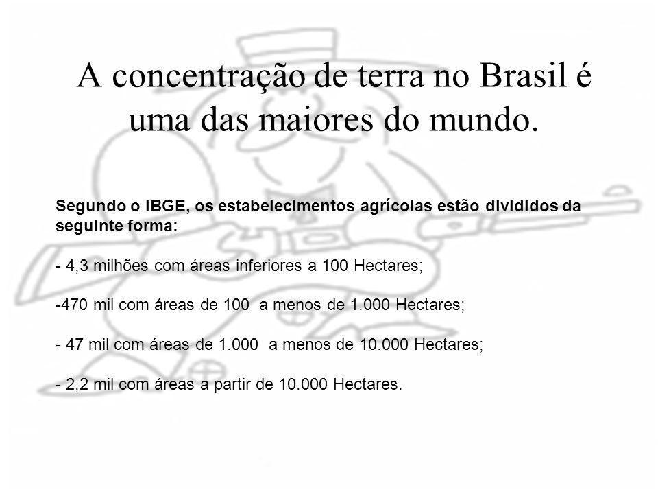 A concentração de terra no Brasil é uma das maiores do mundo. Segundo o IBGE, os estabelecimentos agrícolas estão divididos da seguinte forma: - 4,3 m