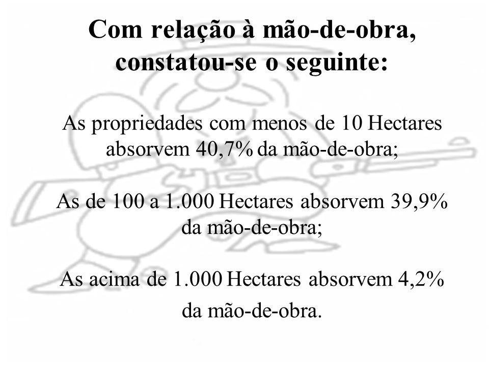 Com relação à mão-de-obra, constatou-se o seguinte: As propriedades com menos de 10 Hectares absorvem 40,7% da mão-de-obra; As de 100 a 1.000 Hectares