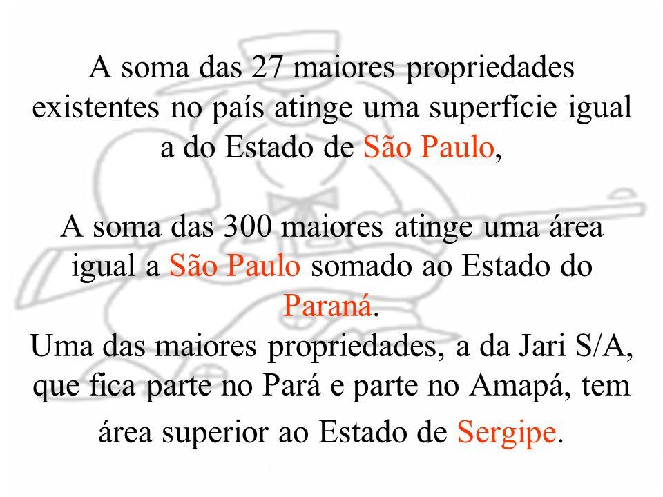 A soma das 27 maiores propriedades existentes no país atinge uma superfície igual a do Estado de São Paulo, A soma das 300 maiores atinge uma área igu