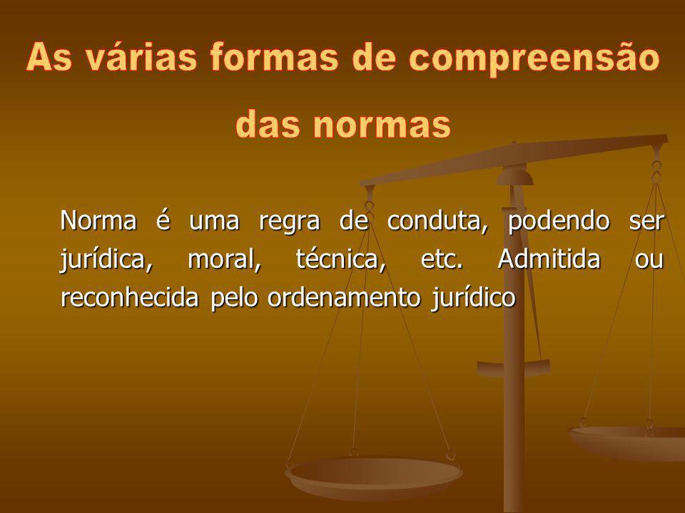 Norma é uma regra de conduta, podendo ser jurídica, moral, técnica, etc. Admitida ou reconhecida pelo ordenamento jurídico Norma é uma regra de condut