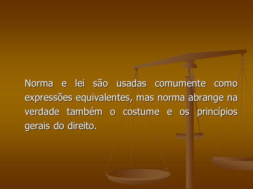 Norma e lei são usadas comumente como expressões equivalentes, mas norma abrange na verdade também o costume e os princípios gerais do direito. Norma