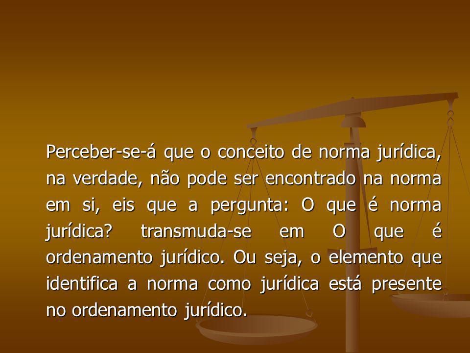 Perceber-se-á que o conceito de norma jurídica, na verdade, não pode ser encontrado na norma em si, eis que a pergunta: O que é norma jurídica? transm