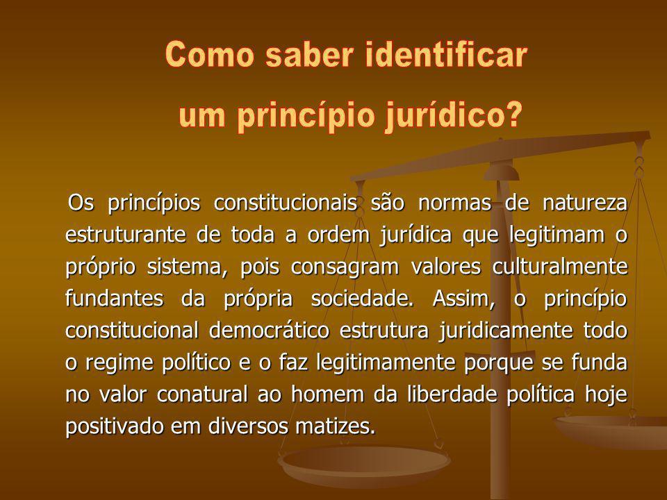 Os princípios constitucionais são normas de natureza estruturante de toda a ordem jurídica que legitimam o próprio sistema, pois consagram valores cul