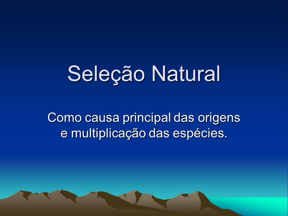 Seleção Natural Como causa principal das origens e multiplicação das espécies.