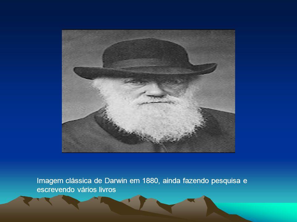 Imagem clássica de Darwin em 1880, ainda fazendo pesquisa e escrevendo vários livros