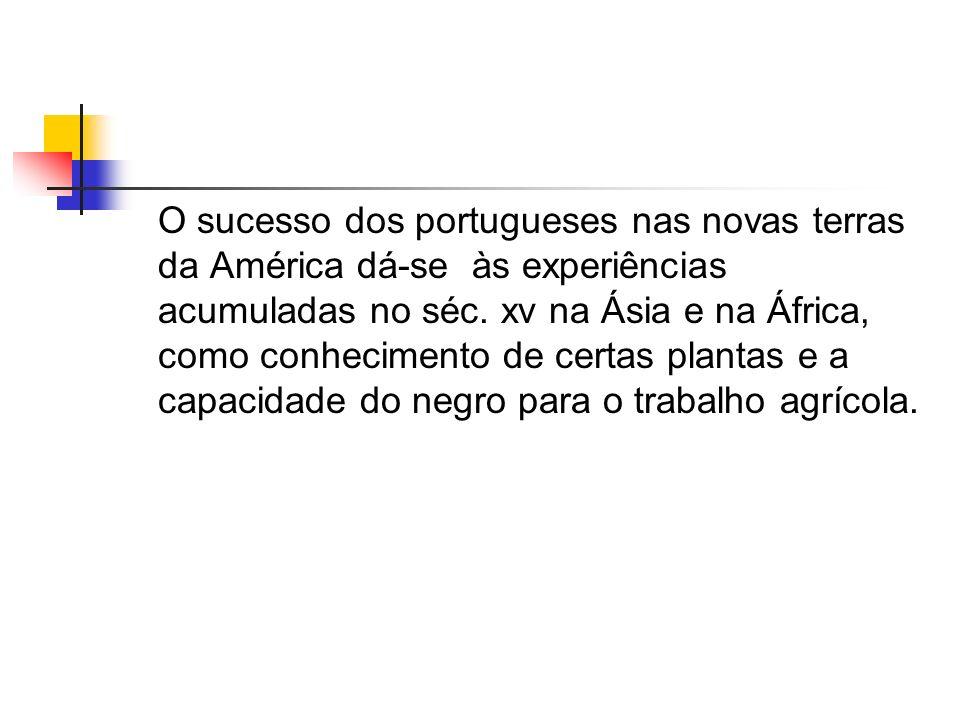 O sucesso dos portugueses nas novas terras da América dá-se às experiências acumuladas no séc. xv na Ásia e na África, como conhecimento de certas pla