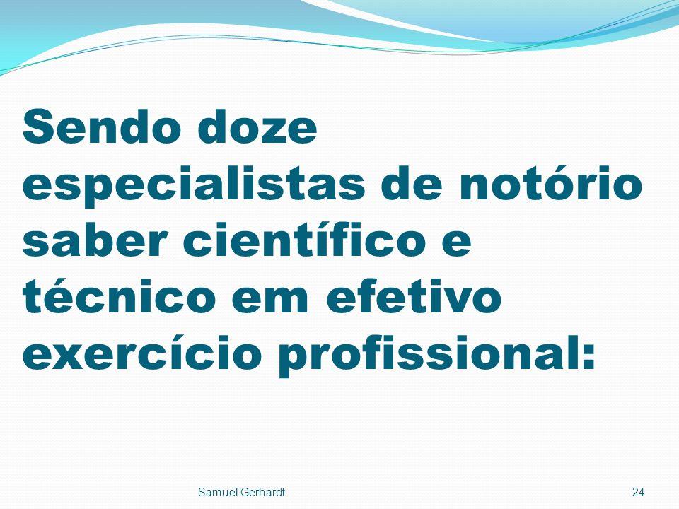 Sendo doze especialistas de notório saber científico e técnico em efetivo exercício profissional: Samuel Gerhardt24