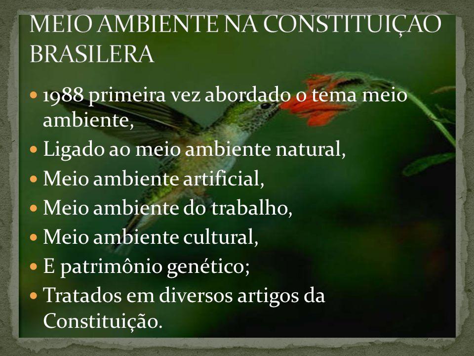 1988 primeira vez abordado o tema meio ambiente, Ligado ao meio ambiente natural, Meio ambiente artificial, Meio ambiente do trabalho, Meio ambiente cultural, E patrimônio genético; Tratados em diversos artigos da Constituição.