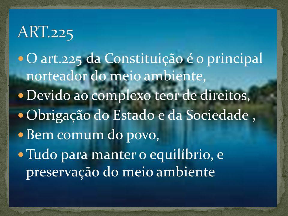 O art.225 da Constituição é o principal norteador do meio ambiente, Devido ao complexo teor de direitos, Obrigação do Estado e da Sociedade, Bem comum do povo, Tudo para manter o equilíbrio, e preservação do meio ambiente