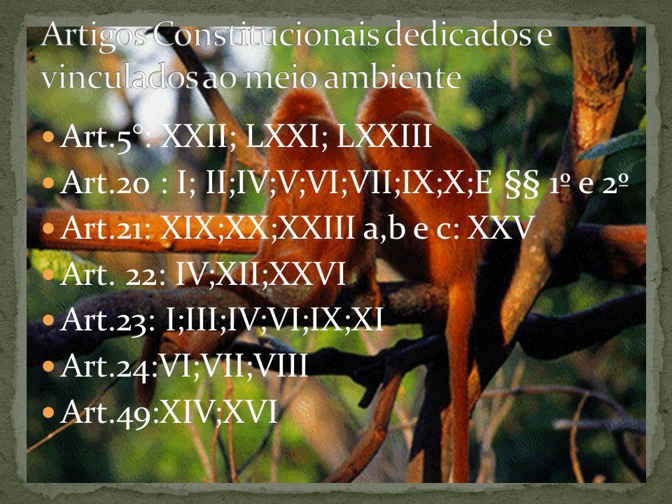 Art.5°: XXII; LXXI; LXXIII Art.20 : I; II;IV;V;VI;VII;IX;X;E §§ 1º e 2º Art.21: XIX;XX;XXIII a,b e c: XXV Art.