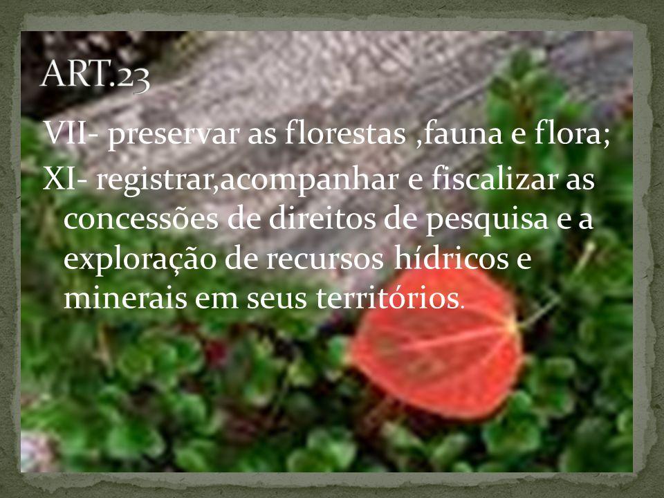VII- preservar as florestas,fauna e flora; XI- registrar,acompanhar e fiscalizar as concessões de direitos de pesquisa e a exploração de recursos hídricos e minerais em seus territórios.
